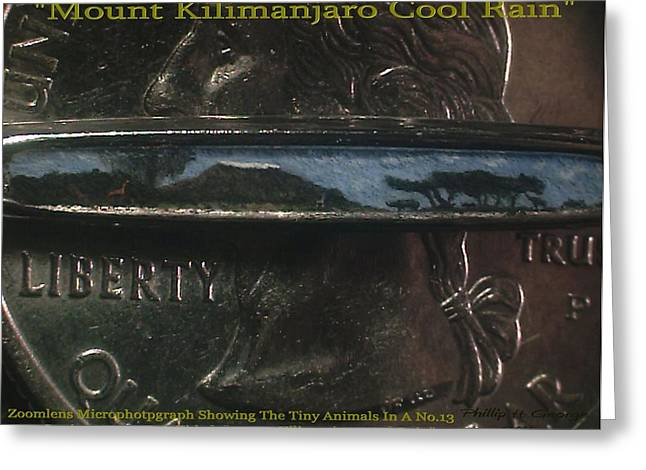Nanomicroinfinity Art Greeting Cards - Mount Kilimanjaro Cool Rain  Greeting Card by Phillip H George