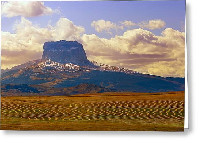 Mountain And Farmers Field Greeting Card by Don Hammond