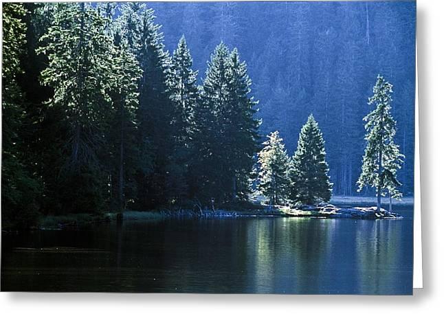 Mountain Lake In Arbersee, Germany Greeting Card by John Doornkamp