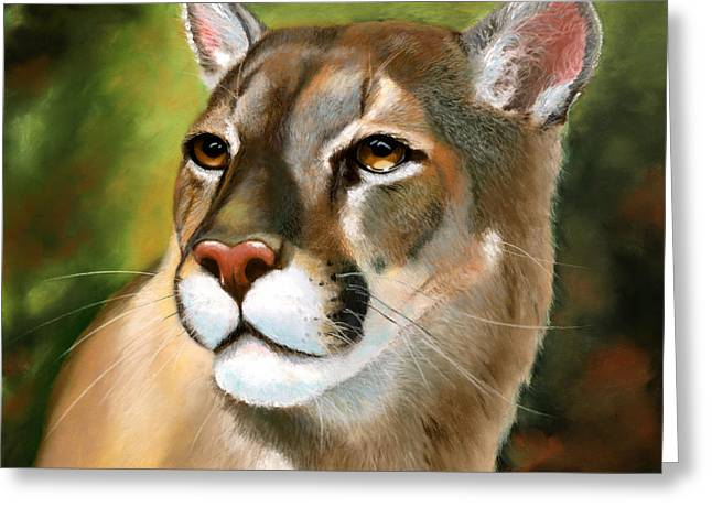Mountain Lion Greeting Card by Janet Biondi