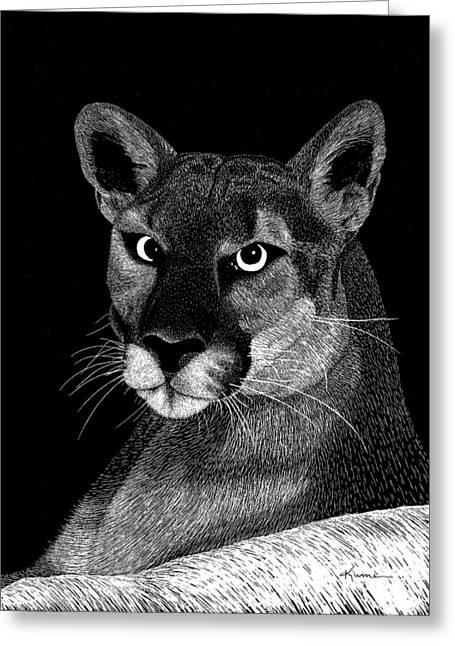 Mountain Lion Greeting Card by Kume Bryant