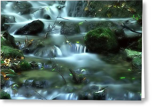 Greeting Card featuring the photograph Mountain River by Odon Czintos