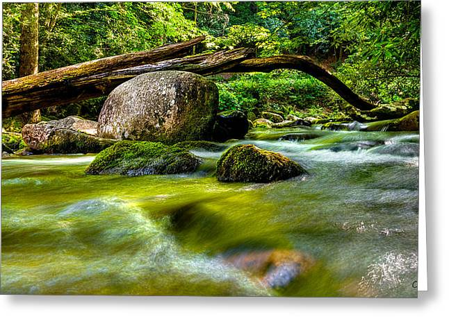 Mountain Stream Greeting Card by Christopher Holmes