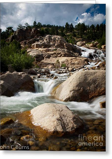 Mountain Stream Greeting Card by John Burns