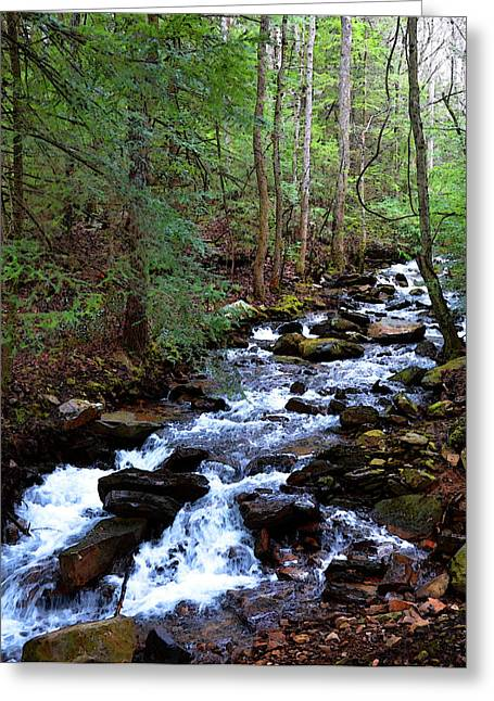 Greeting Card featuring the photograph Mountain Stream by Paul Mashburn