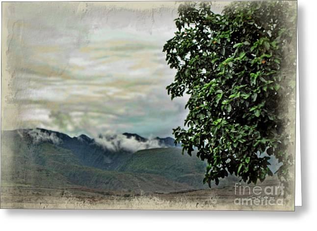 Mountain Time Greeting Card by Joan  Minchak