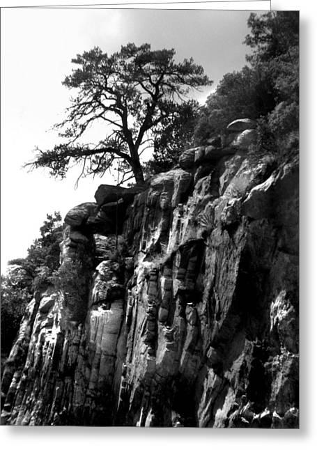 Mountain Tree Greeting Card