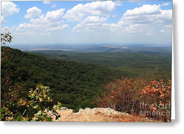 Mountain Vista Greeting Card by Theresa Willingham