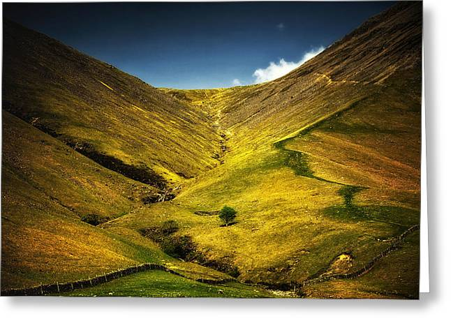 Mountains And Hills Greeting Card by Svetlana Sewell
