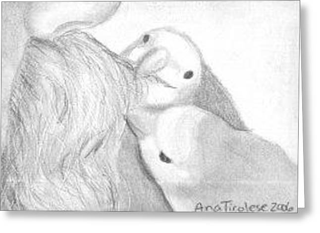 Greeting Card featuring the drawing Moustache Grooming Lovebirds - Aceo by Ana Tirolese