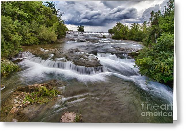 Movement Greeting Card by Chuck Alaimo