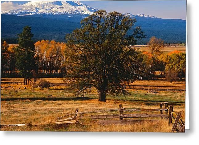 Mt. Adams Autumn Greeting Card by Todd Kreuter
