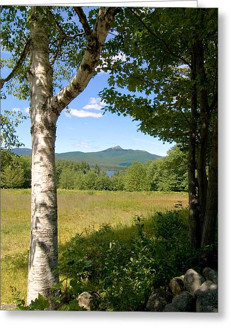 Mt. Chocorua Summer Vertical Greeting Card by Larry Landolfi