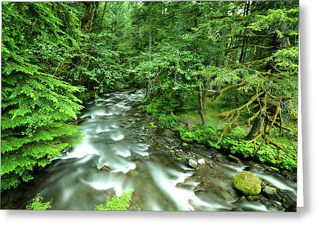 Greeting Card featuring the photograph Mt. Hood Creek by Matt Hanson