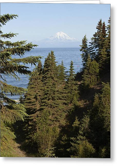 Mt Redoubt Greeting Card