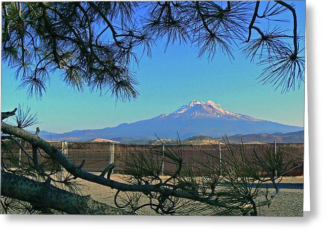 Mt Shasta At Weed  Greeting Card by Pamela Patch