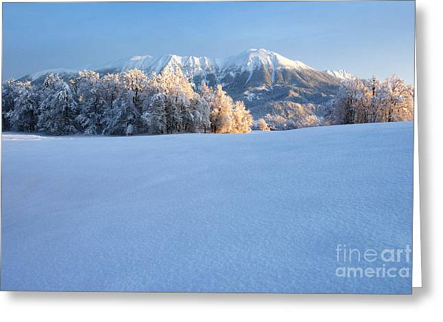 Mt. Stol In The Winter Greeting Card by Tomaz Kunst