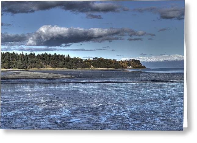 Greeting Card featuring the photograph Mud Bay  by Michele Cornelius
