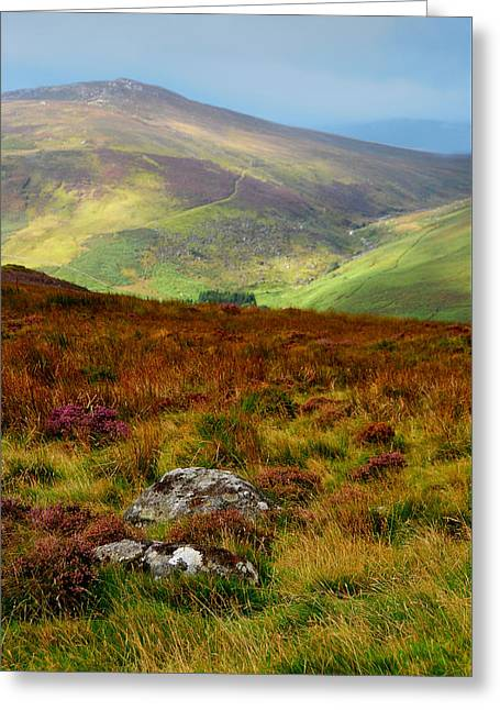 Multicolored Hills Of Wicklow. Ireland Greeting Card by Jenny Rainbow