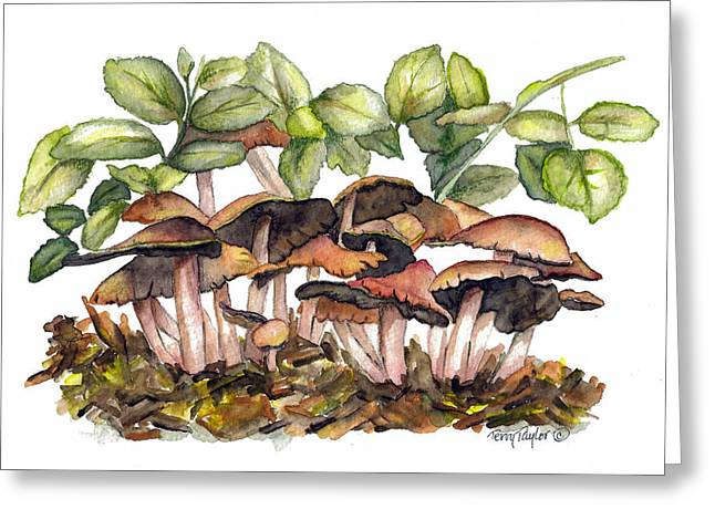 Greeting Card featuring the painting Mushroom Forest by Terry Taylor