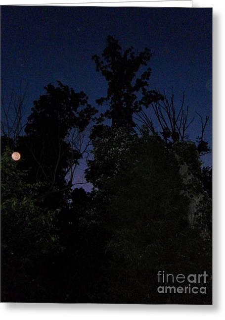 My Personal Backyard Moon Greeting Card by Doug Kean
