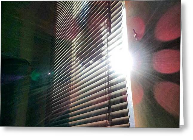 My #window In #morning #sunshine #sun Greeting Card