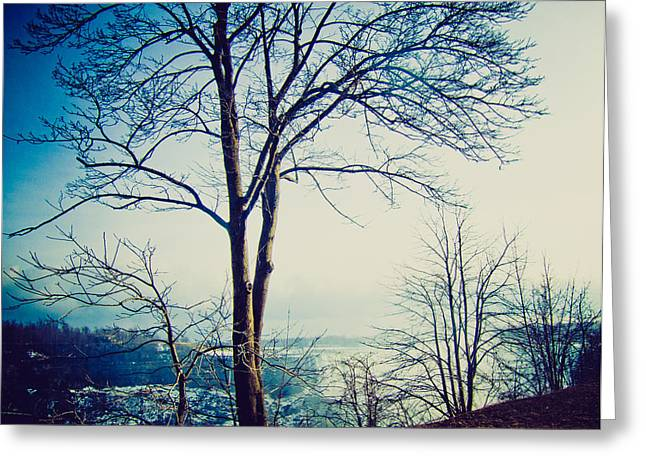 Greeting Card featuring the photograph Mystic Blue by Sara Frank