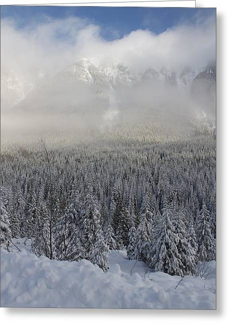 Greeting Card featuring the photograph Mystic Peaks by Sylvia Hart