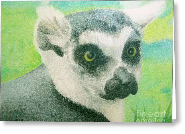 Mystic Seer Of Madagascar Greeting Card by Lisa Urankar