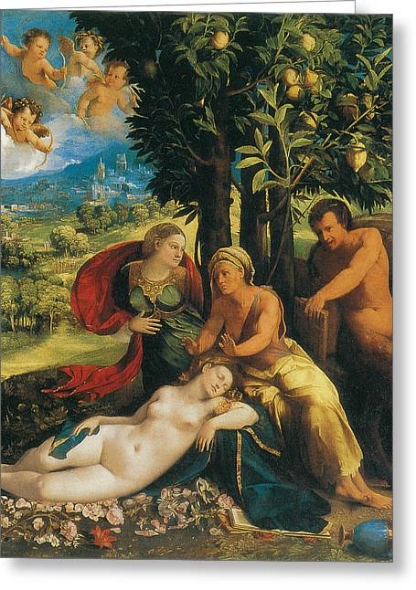 Mythological Scene Greeting Card by Dosso Dossi