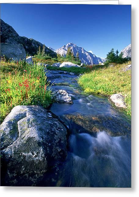 Nabob Pass, Mt. Mercator, Waddington Greeting Card