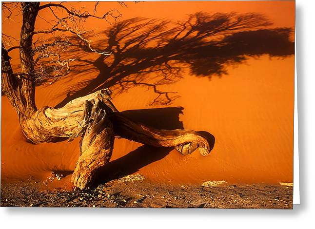 Namibia 2 Greeting Card by Mauro Celotti