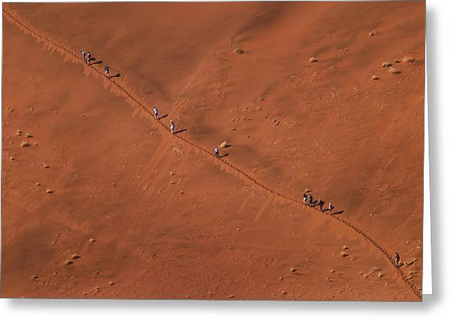 Namibia Dune Hoppers Greeting Card by Nina Papiorek