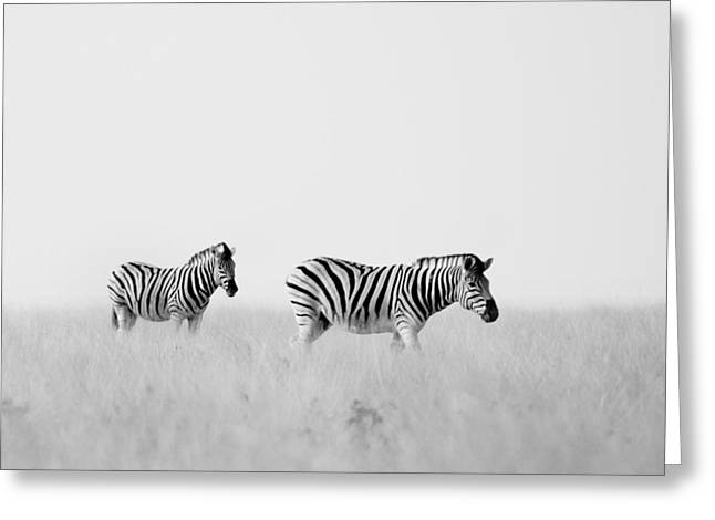 Namibia Zebras I Greeting Card by Nina Papiorek
