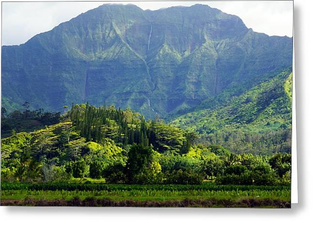 Namolokama And Waioli Falls Kauai Greeting Card by Kevin Smith