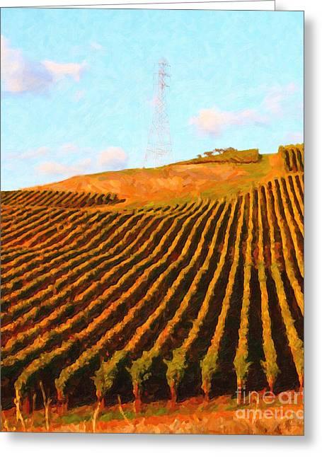 Napa Valley Vineyard . Portrait Cut Greeting Card