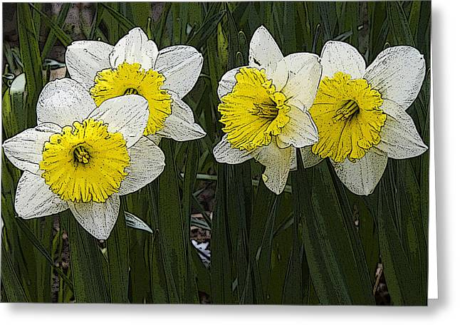 Narcissus Greeting Card by Michael Friedman