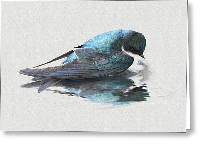 Narcissus Greeting Card by Ron Jones