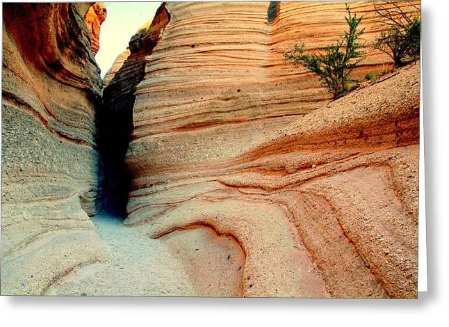 Narrow Is The Way.. Greeting Card by Al  Swasey
