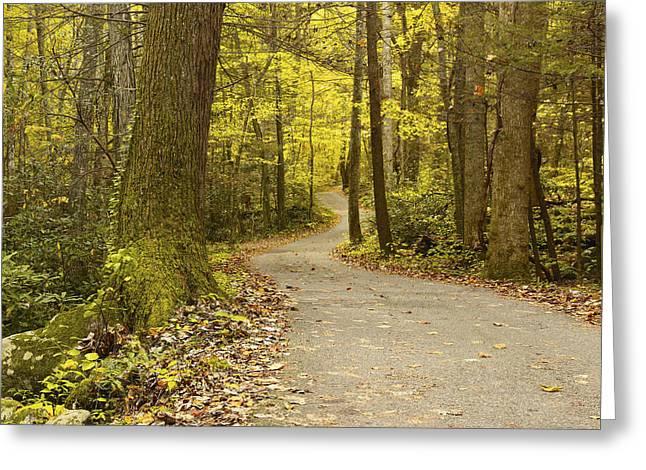 Narrow Way Greeting Card by Gary Suddath