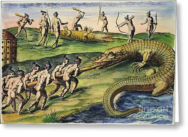 Native Americans: Crocodiles, 1591 Greeting Card