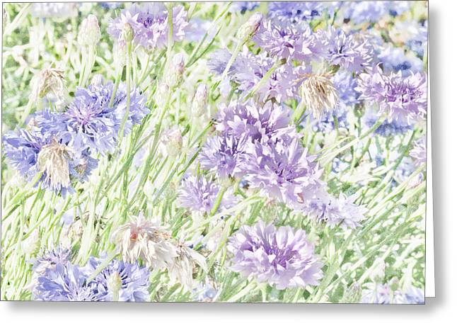 Natural Beauty Greeting Card by Bonnie Bruno