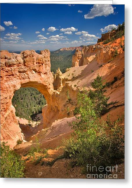 Natural Bridge In Bryce Canyon National Park Greeting Card by Louise Heusinkveld