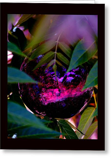 Greeting Card featuring the photograph Natural Transcendence by Susanne Still