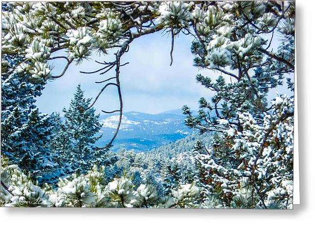 Greeting Card featuring the photograph Natural Wreath by Shannon Harrington