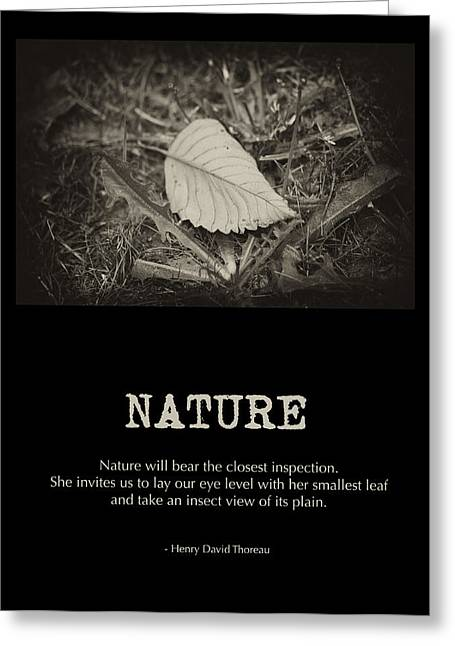 Nature Greeting Card by Bonnie Bruno