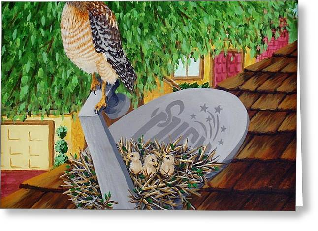 Nature Channel- Red Shouldered Hawk Greeting Card