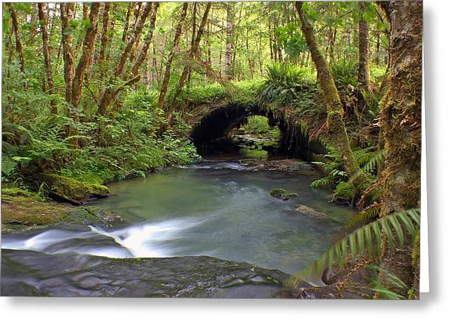 Nature Tunnel Greeting Card