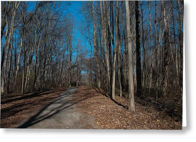 Nature Walk Greeting Card by Herman Boodoo
