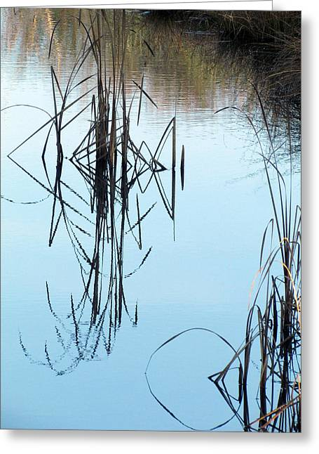 Greeting Card featuring the photograph Nature's Art by I'ina Van Lawick